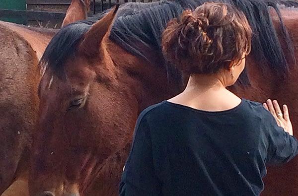 Mindfulness y desarrollo personal con caballos