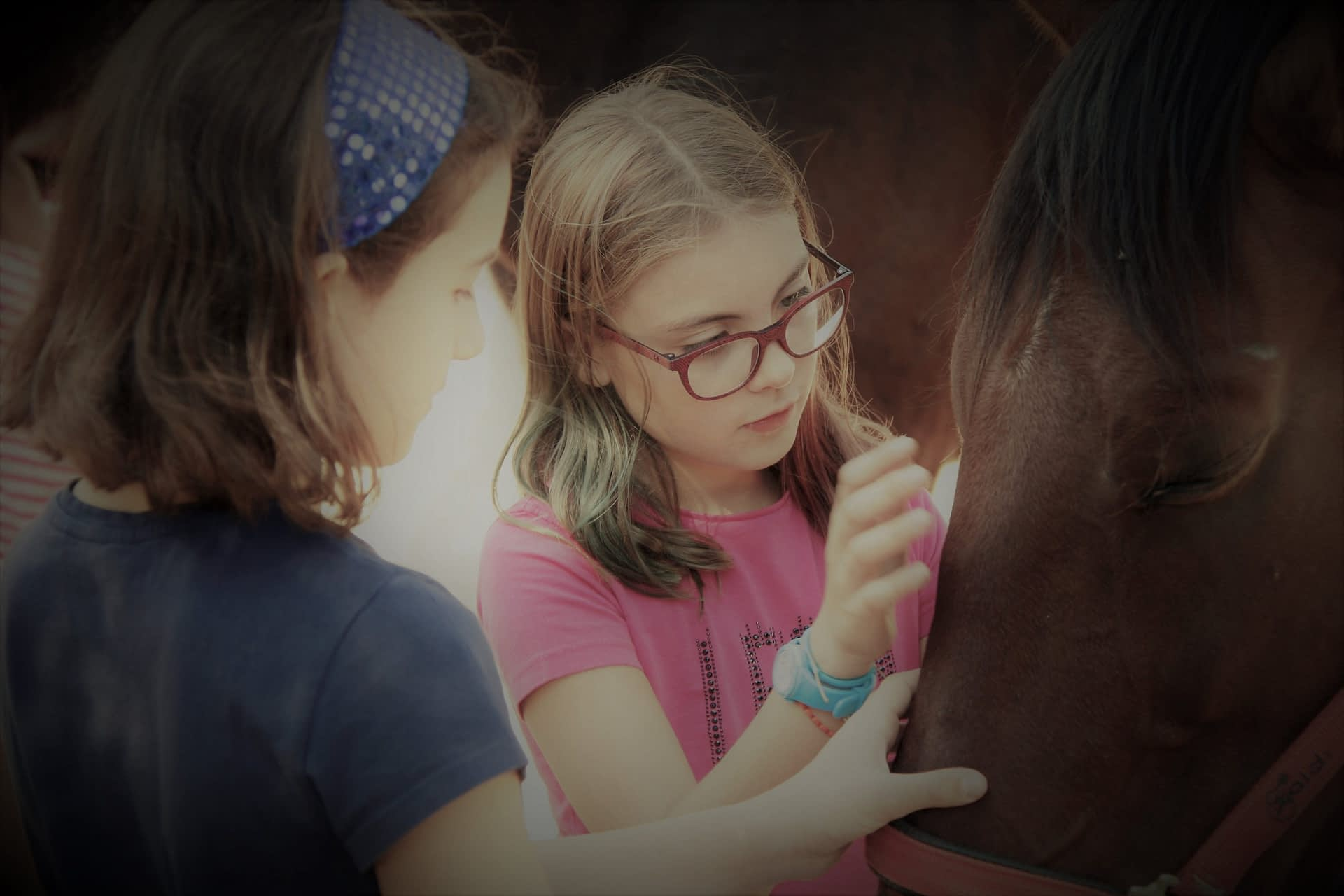 Horses to educate emotionally from childhood