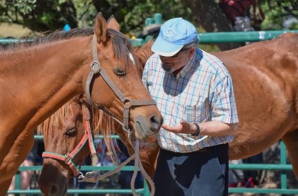 Intervenciones con caballos para la tercera edad